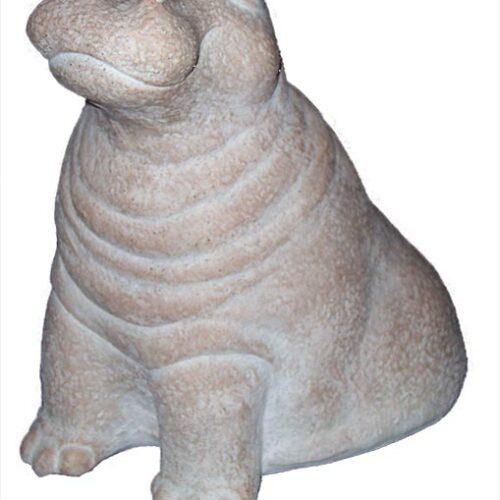 austin-hippo