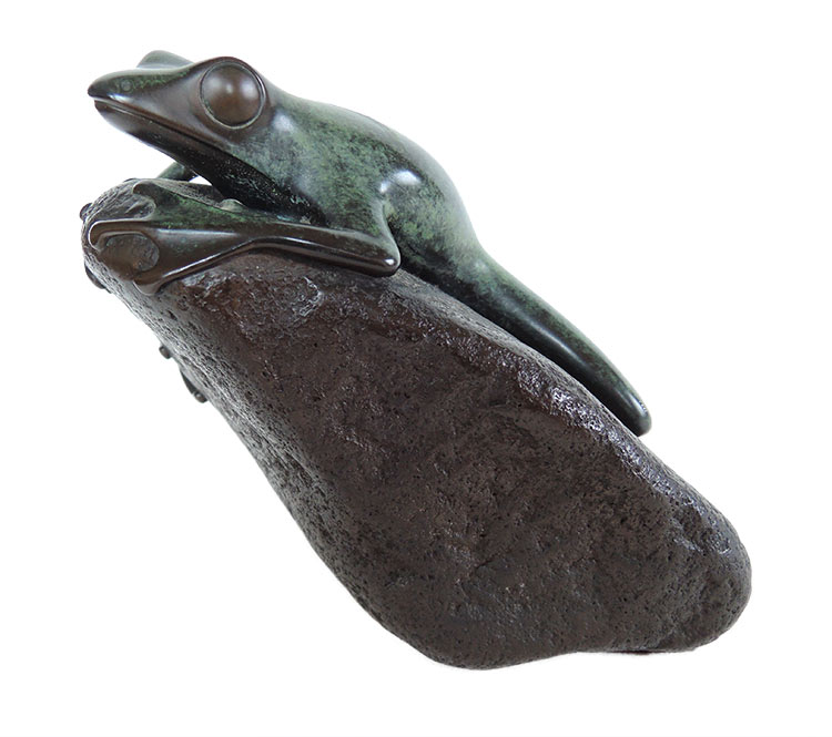 Phil Vanderlei 'Frog on Rock'
