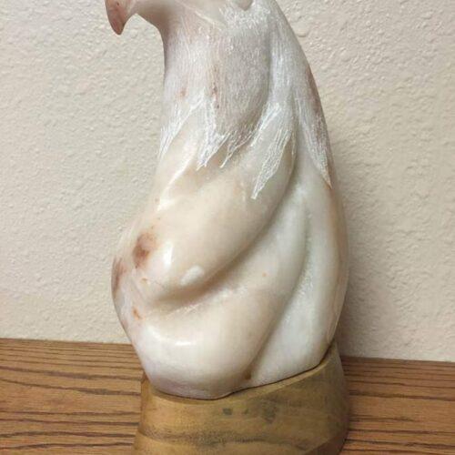 Tava (Seminole Indian) 'Alabaster Pride'