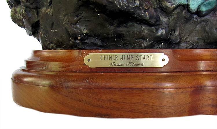 Susan Kliewer 'Chinle Jump Start'