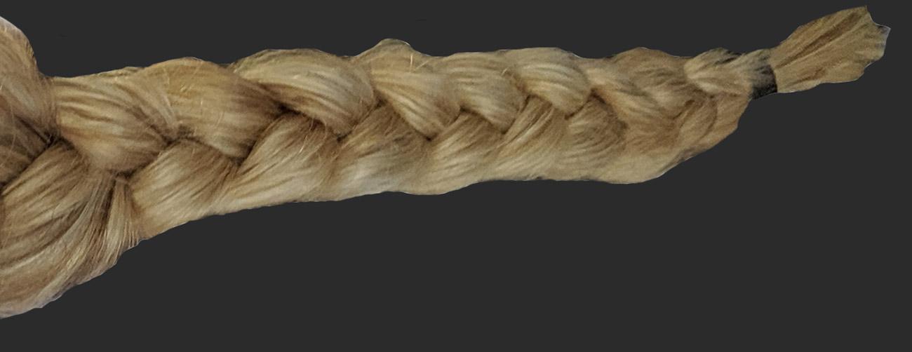 Braids of Hair