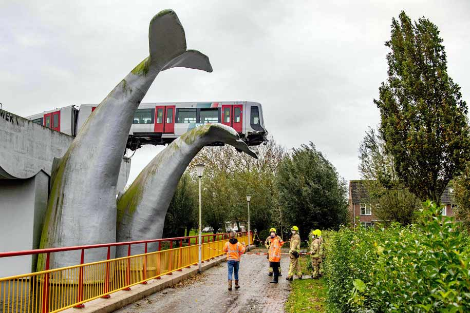 Whale Tail sculpture saves Metro Train