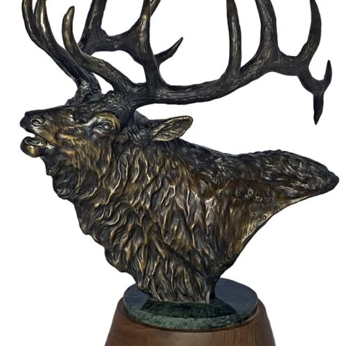Daniel Parker bronze sculpture of an Elk titled Perfection